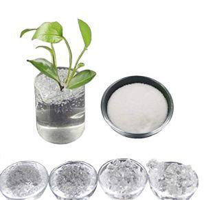 Hydrogel cristal de potassium polymère absorbante Polyacrylate SAP pour créer superterra pour jardinage fleurs agriculture culture 500 GR