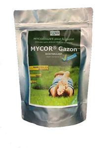 Mycor® gazon pour 100 m²