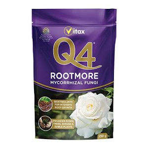 Q4 Mycorhizal Fungi Rootmore Sachet de 250 g