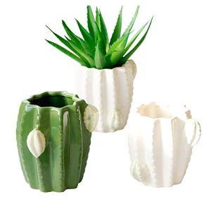 SPLLEADER 2pcs Succulent Plant Pot en céramique Mignon décoratifs Pot Cactus céramique Pot de Fleurs Home Décor Succulent Planteur Fleur Plante
