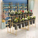 Support en Pot pour Plantes, avec 9 seaux carrés Blancs, étagère à Fleurs en métal de Style européen doré, présentoir pour Plantes d'intérieur, Support pour Plantes pour décor de Bureau d'hôtel de p