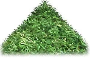 Tuda Grass Direct Gazon Artificiel Montana de 2 m x 1 m, Hauteur de 30 mm, Gazon Artificiel et réaliste, Aspect Naturel et réaliste Astro de Jardin de 30 mm, 100 cm x 200 cm