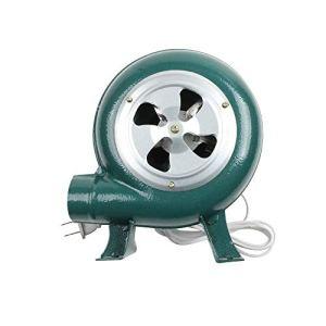 YOBAIH 220 V ~ 240V ménagers Ventilateur Fer Barbecue Ventilateur Petit Ventilateur centrifuge 30W 40W 60W 80W Souffleur à Batterie (Color : 30W)