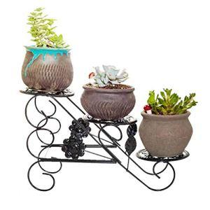 GUOCAO Petite échelle moderne en métal pour pot de fleurs – Pour décoration d'intérieur – Pour balcon, bonsaï, plantes grasses – Peut contenir 3 pots de fleurs (couleur noire)