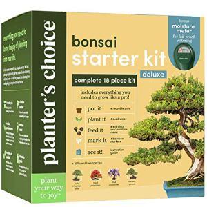 Kit de culture d'arbres Bonsaï – Cultivez 4 bonsaïs d'intérieur – Plantez un jardin à partir de graines – Cadeaux parfait de jardinage pour femmes et hommes Jardiniers : Idées cadeaux inhabituelles