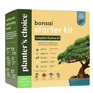 Kit de Démarrage Bonsaï – Le Kit Complet pour Facilement Cultiver 4 Arbres de Bonsaï à Partir de Graines avec Guide Complet et Marqueurs de Plantes en Bambou – Idée de Cadeau Unique
