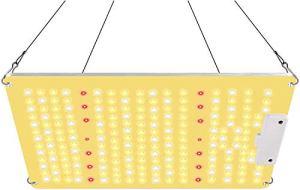 Lampe de Croissance pour Plantes, 2020 QB Series 1000W Lampe pour Plante, High PPFD Full SpectrumLampes de croissance, lampes pour la culture de plantes pour couvrir un 60 x 60cm