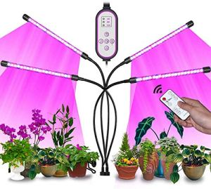 Lampe de Plante 80 LED Lampe de Croissance pour Plantes avec Trépied à 4 Têtes 360° Éclairage Lampe Horticole Spectre Complet 3 Modes de Luminosité 10 Niveaux Dimmables avec Chronométrage 4/8/12H