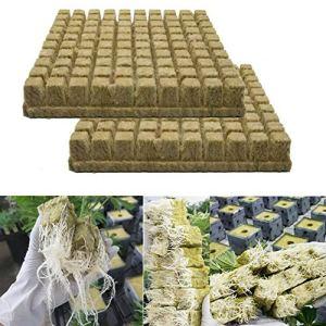 Rockwool Lot de 50/100 cubes de laine de roche pour boutures, clonage, propagation de plantes, base de compresse de serre pour démarrage en laine de pierre