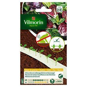 Vilmorin – Ruban de graines chicorées mélange 5m