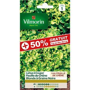 Vilmorin – Sachet graines Laitue à couper Feuille de Chêne blonde graines noires 50% Gratuit