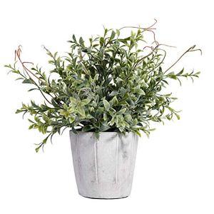 hanbby Fausse Plante Plante Grasse Plantes Face Intérieure Petit Plante en Pot Intérieur Plantes artificielles Plante d'intérieur Véranda Décor Green 1