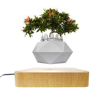 JU&MU Pot de Bonsaï à Lévitation Magnétique, Mini Pot de Fleurs Rotatif Creative Sky-garden, Pour Décoration de Bureau et Cadeaux (Bois Clair)
