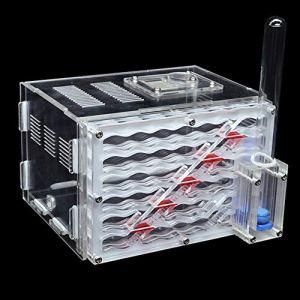 Kshzmoto Bricolage Antgranery Humidité Zone d'alimentation Acrylique Fourmi Ferme Fourmis Maison Cadeau d'anniversaire