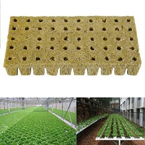 Laine de Roche Lot de 50 Cubes de Laine de Roche Hydroponique Grow Cubes Base de Compression Plateau de Laine de Roche pour Culture Compresse Soilless Plantation Boutures Clonage Propagation Plantes