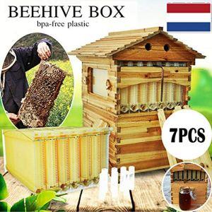 Naturel 7X amélioration Ruche Apiculture boîte en Bois de cèdre coulée Libre Cadre de Ruche Miel + boîte en Bois de cèdre nid Apiculture B07R7H3LXK