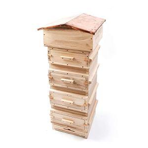 Paynes Warre Hive – Complet (toit en cuivre)