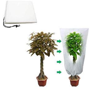 WENLIANG Plantes Couvertures Voile Hivernage,Couverture VéGéTale Gel pour l'hiver,ExtéRieur Protection Sac Couverture VéGéTale(2pcs) 120x80cm