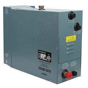 Générateur de vapeur électrique, générateur 6KW en acier inoxydable avec contrôleur d'affichage de température numérique pour la vapeur de douche d'hôtel à la maison de salle de bains de SPA(EU 220V)