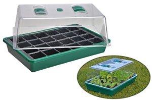 Mini serre pour plantes