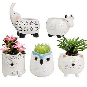 Pots de fleurs en céramique pour plantes succulentes – Ensemble animal mignon en forme de chat, vache, éléphant, renard, hibou, décoration d'intérieur