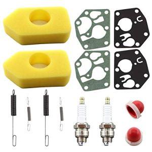 REEMO Filtre à air pour 698369 4216 5086 K 5088 avec membranes de carburateur remplace 495770 795083 et 691859 262759 692211 ressort de régulateur Primer ampoule 694394
