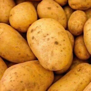 Alick 20 graines de légumes de pomme de terre