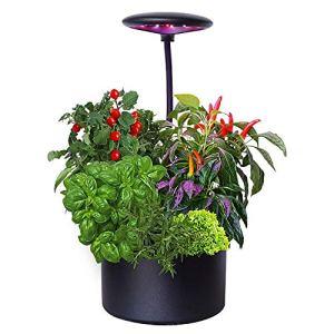 COUYY Machine de Plantation de légumes d'intérieur, Machine de Plantation de légumes, Machine de Plantation de légumes hydroponique, Pot de Fleurs intelligentes