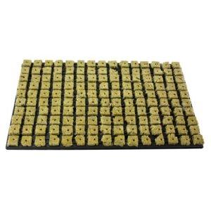 GRODAN Tray 150anzucht médias de laine de roche de Bloc 2,5cm x 2,5cm en coque en plastique 53cm x 32cm avec greenception wuchs Engrais 100g 15x