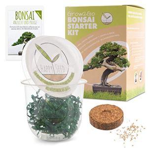 GROW2GO Bonsai Kit avec eBook GRATUIT – Bonzai Set avec mini-serre, graines et terre – idée cadeau durable pour les amoureux des plantes (Pin Australien)