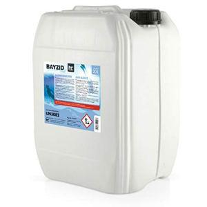 Höfer Chemie BAYZID 1 x 10 L Anti-algues pour piscine – effet rapide contre les algues – non moussant