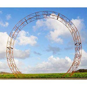 L'Héritier Du Temps Prestigieuse Arche à Rosiers Passage Portail de Jardin en Acier Brut Oxydé 31x236x270cm