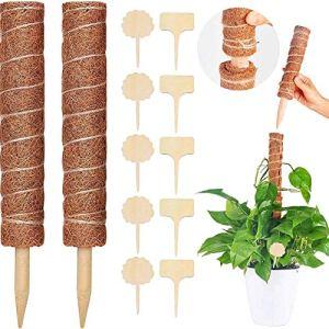 MGRETT Tuteur Plante, Bâton de Coco pour Plante Grimpante, 2 Pièces 40cm Poteau de Support de Plante Tuteur Coco, avec 10 Étiquettes pour Support Plantes Interieur Jardin Tuteur Plantes Grimpantes
