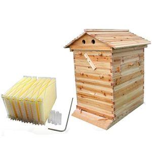 Ruche en bois naturel avec cadre à 7 ruches – Peigne naturel – Maison d'abeilles – Kit de démarrage pour apiculteurs