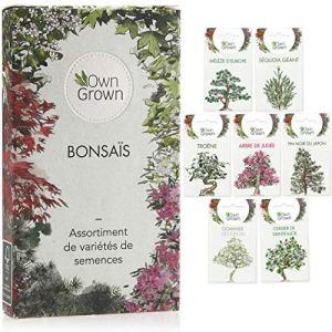 Set de graines bonsaï : Kit graines à planter avec 7 variétés de graine bonsai – Graines d'arbre bonzaï, plante pour petit jardin zen – Kit bonsaï de OwnGrown