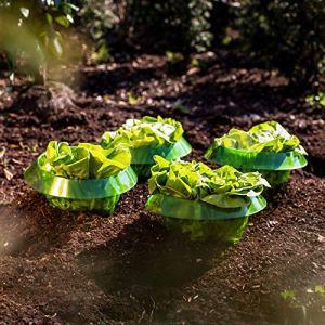 UPP Anneaux de salade | Protection efficace contre les escargots pour vos plantes de salade et choux | Répulsif anti-limaces sans produits chimiques | Col en plastique [5 pièces]