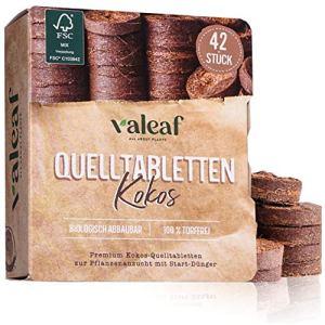 valeaf Pastilles de coco (42 pièces) (42 pièces).