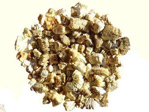 Vermiculite – 100 grammes – SEM06