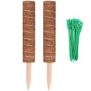 Wuawtyli 2 bâtons de Noix de Coco Totem, Totem de bâton de Mousse de Noix de Coco, Cadre dextension dintérieur de cocotier pour Plantes grimpantes, 20 Attaches, 40 cm