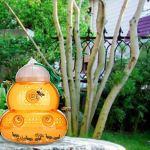 2pcs Wasp Piège, frelons, guêpes jaunes, les abeilles Catcher en plastique non toxique, Hanging réutilisable ou extérieur Wasp Bee Tabletop Catcher Piège en plastique Hanging Insecticide miel