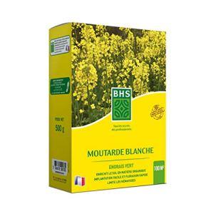 BHS MOU500 Moutarde 500g Croissance Très Rapide