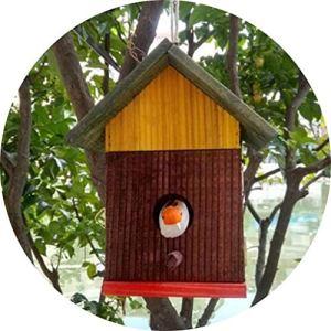 Bird Cage Single Door Design Outdoor Birdhouse en Bois Étanche Birdhouse Pet Supplies Nichoirs (Couleur: Marron, Taille: 17,5 * 11 * 22 cm)