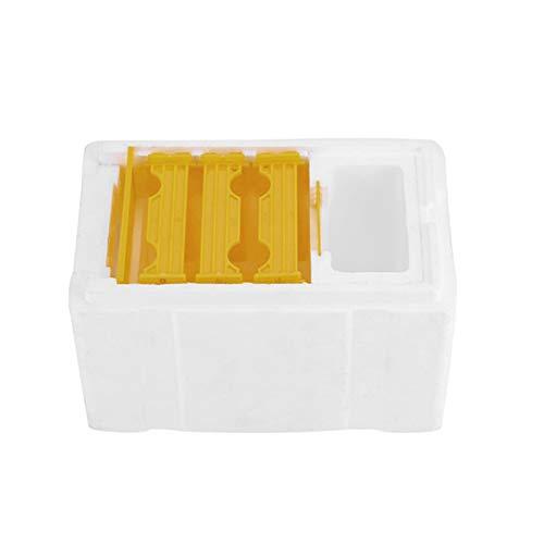 Boîte en mousse pour accouplement des abeilles avec grille pour maintien au chaud – Étanche – 24,1 x 15 x 14,1 cm – Outils d'apiculture pour la pollinisation