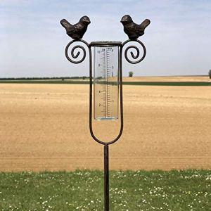 chemin_de_campagne Pluviomètre sur Pic Tige à Piquer de Jardin Fer 101 cm x 15 cm