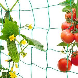 FORMIZON Filet de Jardin, Filet à Plantes Grimpantes, Filet à Ramer pour Récolte de Concombres, Légume, Tomates et Autres Légumes, Filet de Fixation pour Plantes Grimpantes (1.8 x 3.6m)