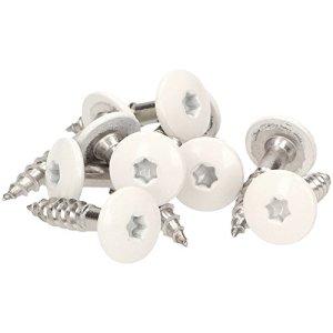 Meisterling® Lot de 100 vis de façade en acier inoxydable V4a Inox, avec tête plate colorée thermolaquée et empreinte Torx T 20 + 1 embout, blanc, blanc