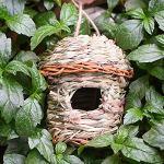 Nid d'oiseaux d'extérieur fait à la main en paille naturelle tissée, longue durée de vie, donnant aux oiseaux une maison sûre pour l'extérieur