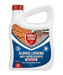 PROTECT EXPERT DIMA25N Algues Lichens, Anti-Dépôt Vert 2,5L | 500m², Triple Actions