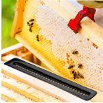 Ruche d'abeille Beetle Blaster plastique petit coléoptère piège Apiculture outils réutilisables Beetle Attraper 10PCS