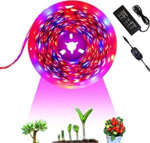 Tesfish 12V LED Lampe pour Plante 5M avec Adaptateur Secteur et Gradateur Lampe de Croissance pour Plantes Spectre Complet IP20 5050 Rouge Bleu 4: 1 pour Plantes d'intérieur Serre Plante Hydroponique